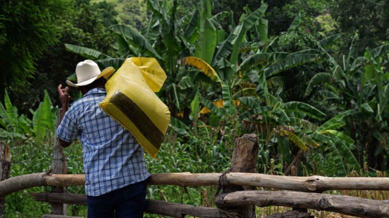ASB Alemania inicia entrega de ayuda humanitaria en Guatemala en respuesta a la sequía