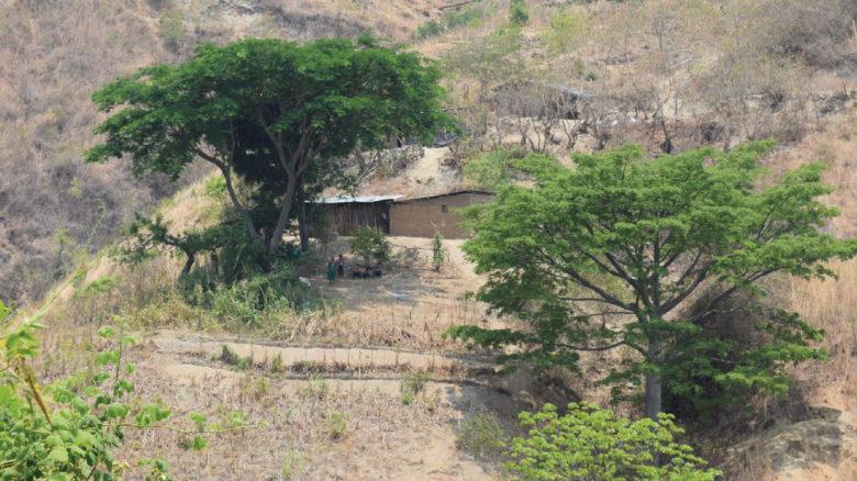 Sequía 2018: Diagnóstico de Impacto y Necesidades en el Corredor Seco de Centroamérica (en alemán)