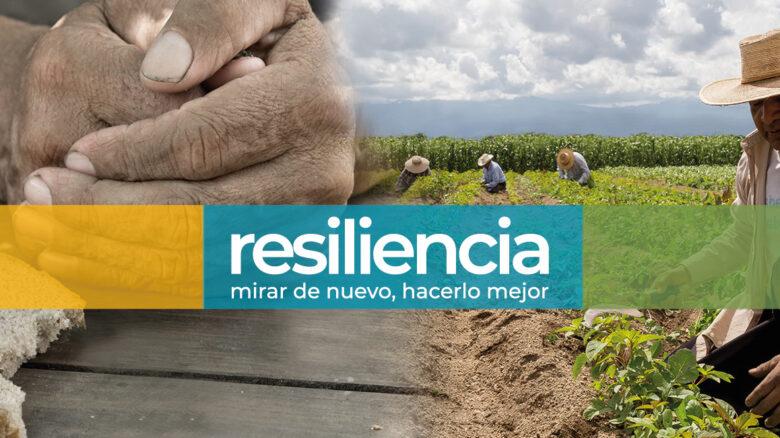 Resiliencia: Mirar de nuevo, hacerlo mejor